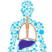 Graphic of liver and lungs