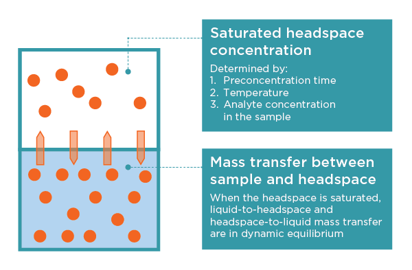 Saturated headspace concentration and mass transfer between sample and headspace explained