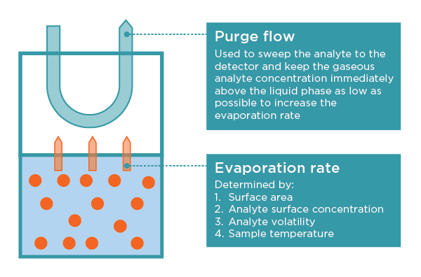 Dynamic headspace sampling explained: purge flow and evaporation rate